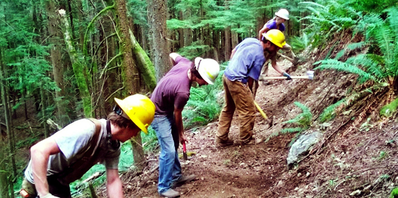 Volunteers maintain trail on Tiger Mountain.
