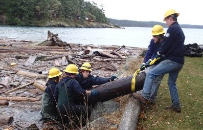 SoundCorps members remove derelict logs from a beach.