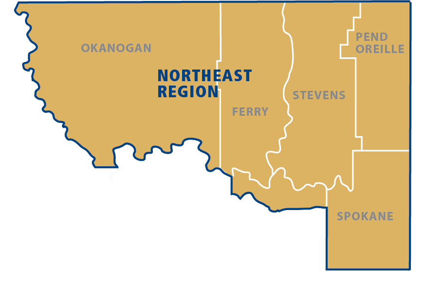 click to enlarge NE Region Map with Counties