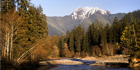 Color photo of South Fork of Hoh River on Olympic Peninsula