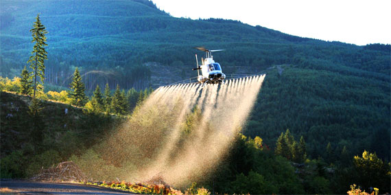 Helicopter applying herbicide