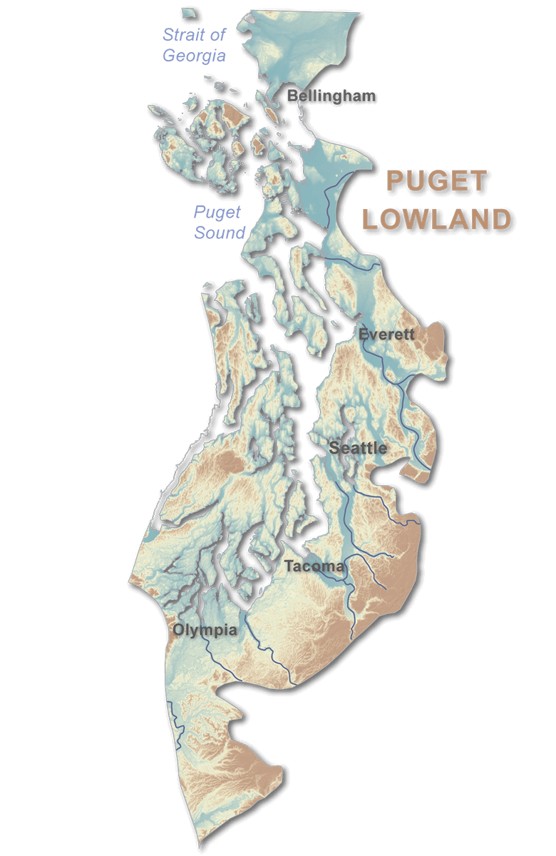 The Puget Lowland Region Is A Wide Low Lying Area Between The Cascade Range To The East And The Olympic Mountains To The West The Region Extends From The