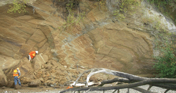 An Beach Side Outcrop Of Young Unconsolidated Deposits Disrupted By A Strand Of The Dabob Bay Fault Zone Found Recently On The Western S Of The Toandos