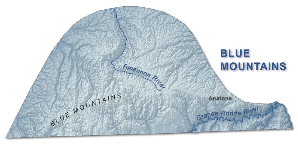 Blue Mountains | WA - DNR