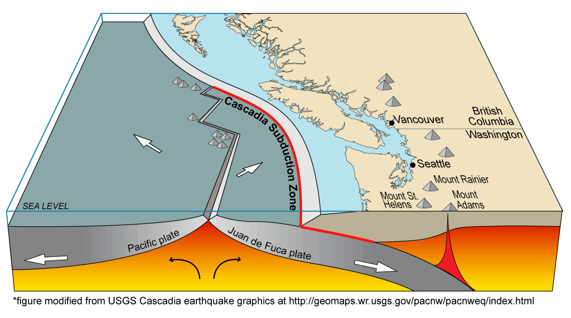 For The Last 40 Million Years The Subduction And Melting Of The Oceanic Juan De Fuca Plate Beneath The Continental North American Plate Has Generated The