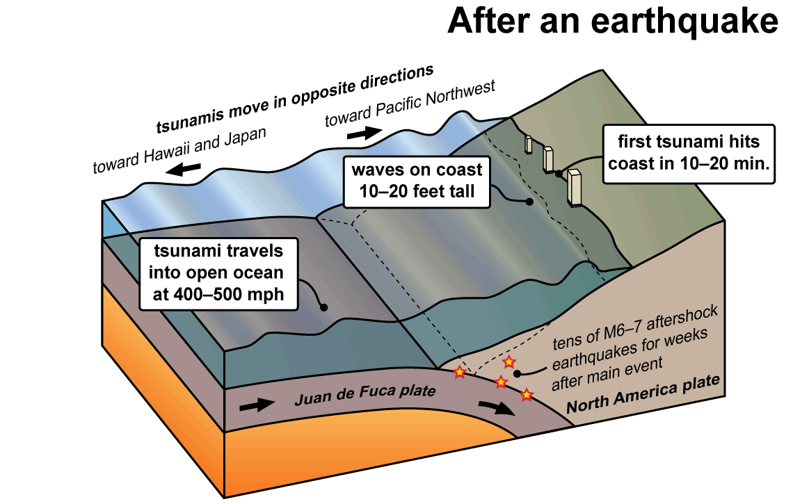 how does an earthquake form a tsunami sciencing - 1140×725