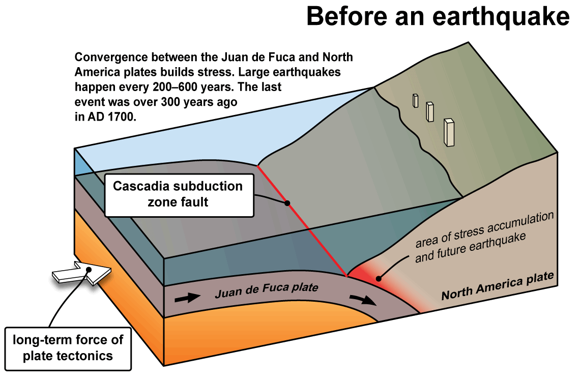 Tsunamis wa dnr the cascadia subduction zone pooptronica Image collections