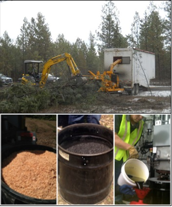 Wood Energy and Biomass