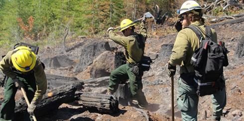 Wildfire Training Academies | WA - DNR