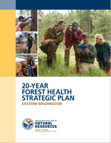 Forest Health Plan Cover