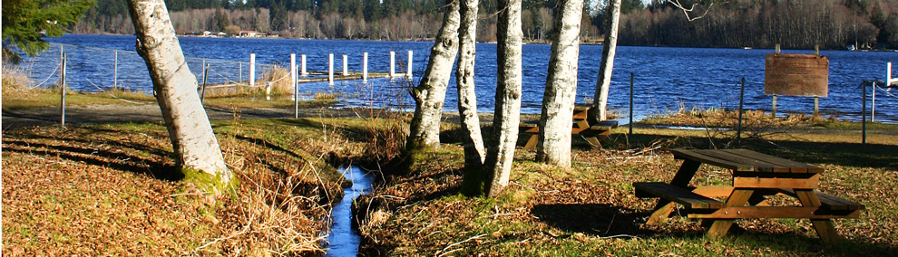 Black Lake and stream in winter, Olympia, Thurston County Washington