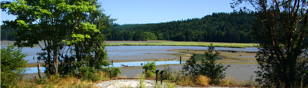 Kennedy Creek Natural Area Preserve (NAP) during low tide. Mudflats are visible.