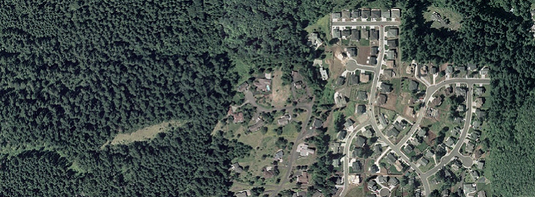 housing development sprawl into forestland