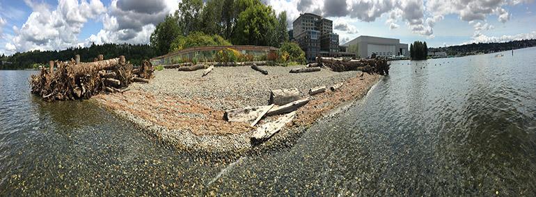 Pristine beach restoration
