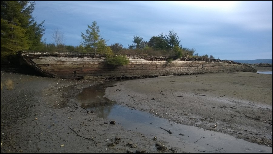 Before photo of shoreline restoration in Hood Canal