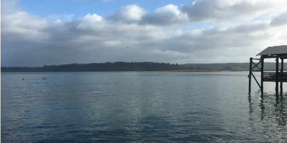 Nisqually Reach Aquatic Reserve