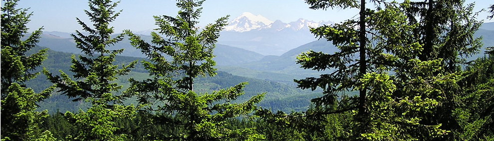 Forested view of Blanchard Mt. and Mt. Baker in NW Washington