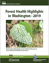 Cover of the 2019 Forest Health Highlights report