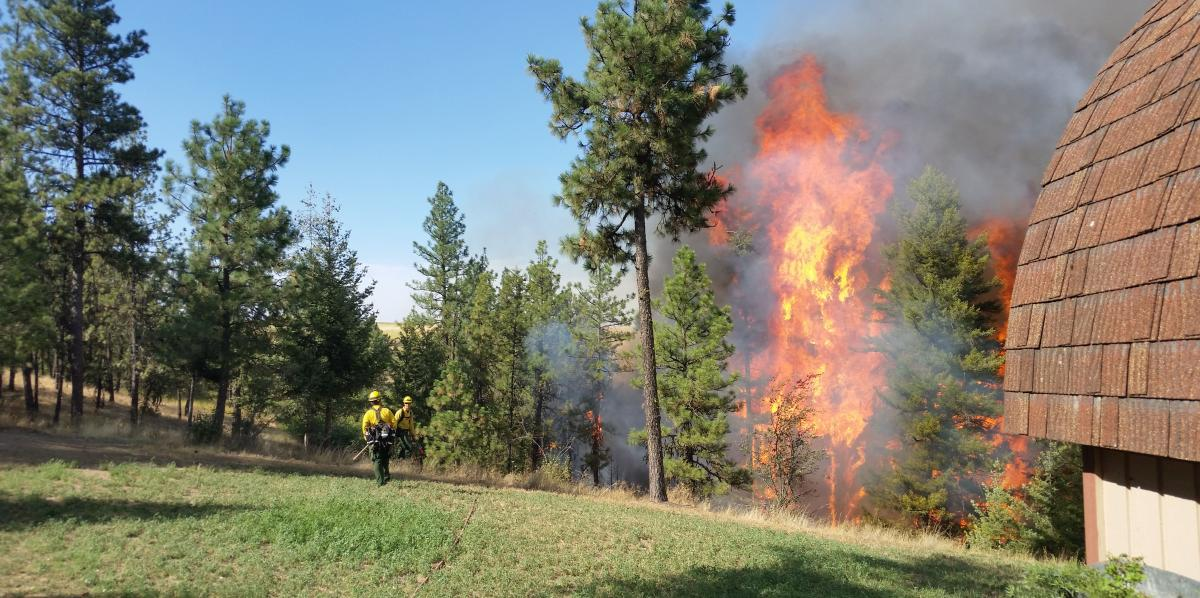 Wildland Fire Protection Strategic Plan Wa Dnr