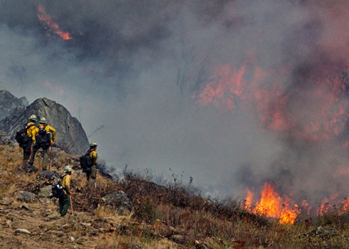 Washington Wildland firefighters.
